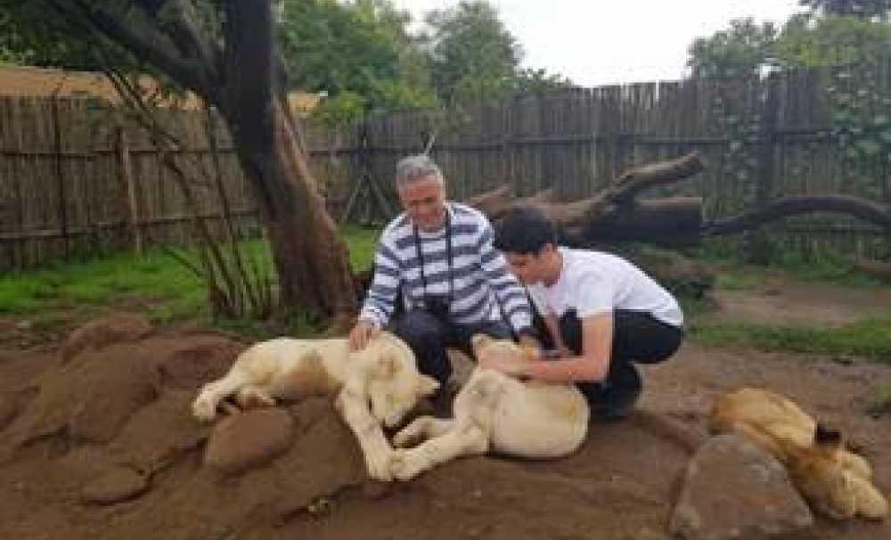 Cem Polatoğlu: Turist olarak Güney Afrika izlenimlerim;