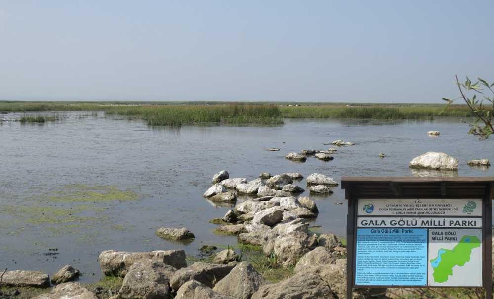 Enez'de bulunan Gala Gölü'nün su kalitesi 18 ay boyunca analiz edilecek