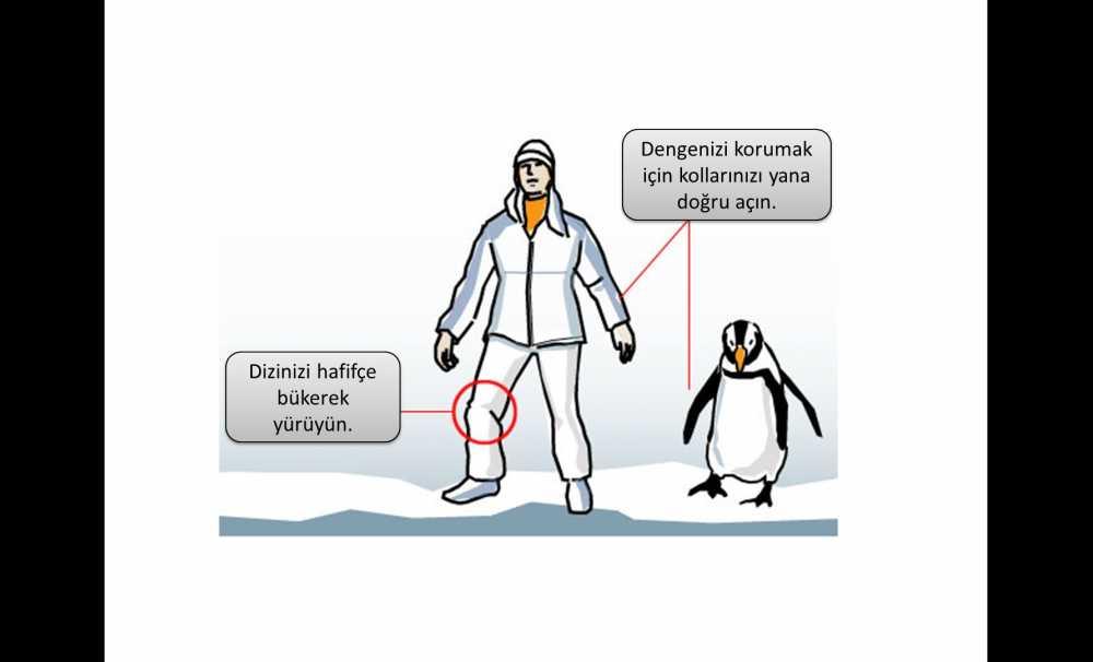 Penguen gibi yürü karda düşme!