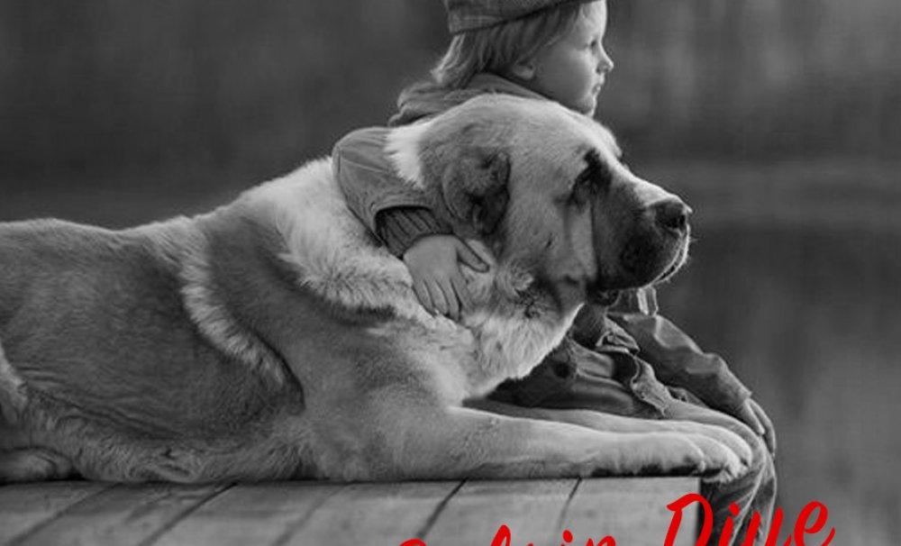 Bir Köpeğin Yayın Yönetmenliğinde